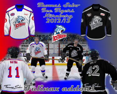 ts-ice-tigers-nurnberg-2013.png